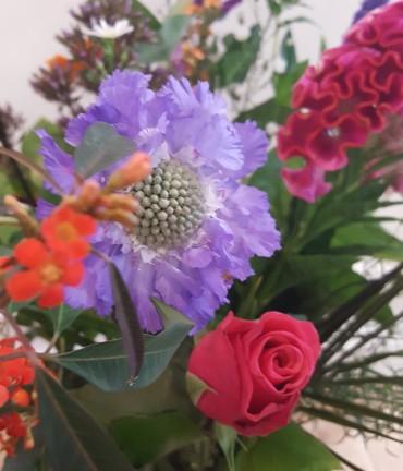 Bloemen bij Marijke bloem en cadeau
